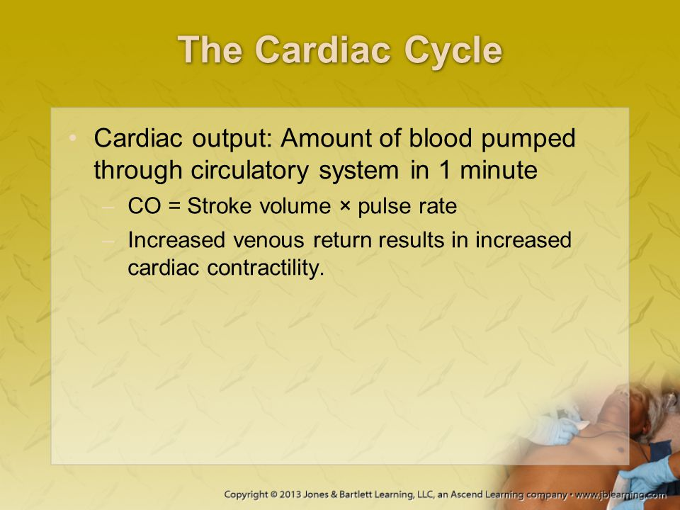 The Cardiac Cycle Cardiac output: Amount of blood pumped through circulatory system in 1 minute. CO = Stroke volume × pulse rate.