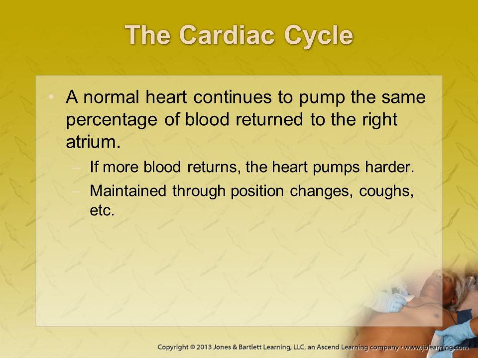 The Cardiac Cycle A normal heart continues to pump the same percentage of blood returned to the right atrium.
