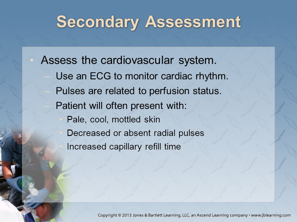 Secondary Assessment Assess the cardiovascular system.