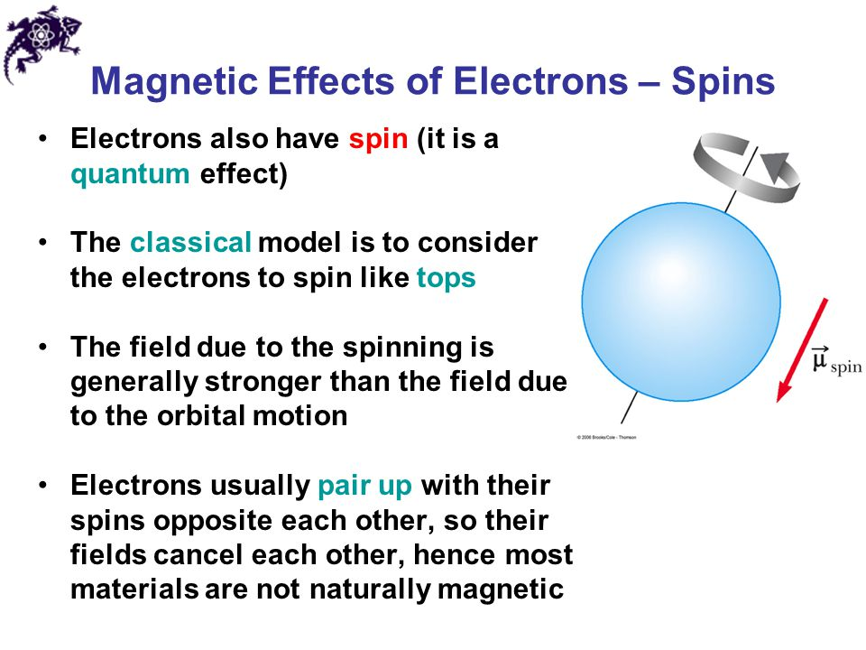 Magnetic Effects of Electrons – Spins
