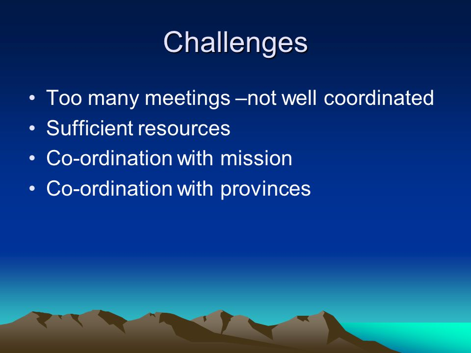 Challenges Too many meetings –not well coordinated