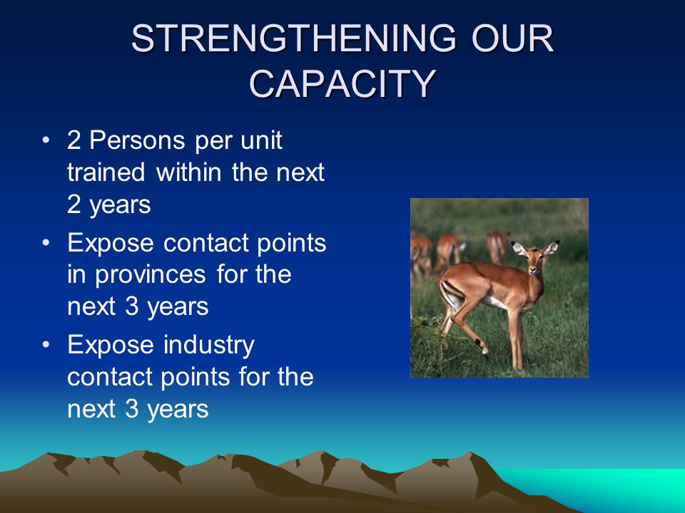 STRENGTHENING OUR CAPACITY