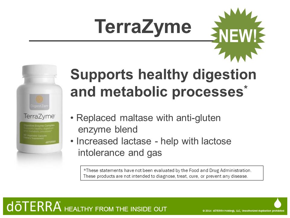 TerraZyme NEW! Supports healthy digestion and metabolic processes* 