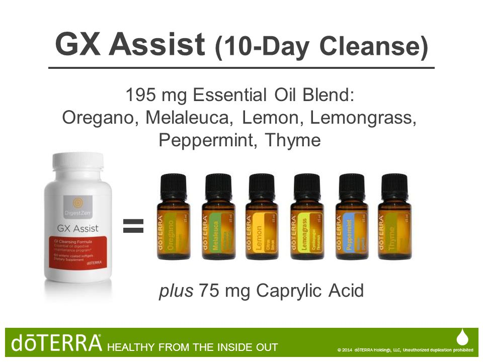 GX Assist (10-Day Cleanse)