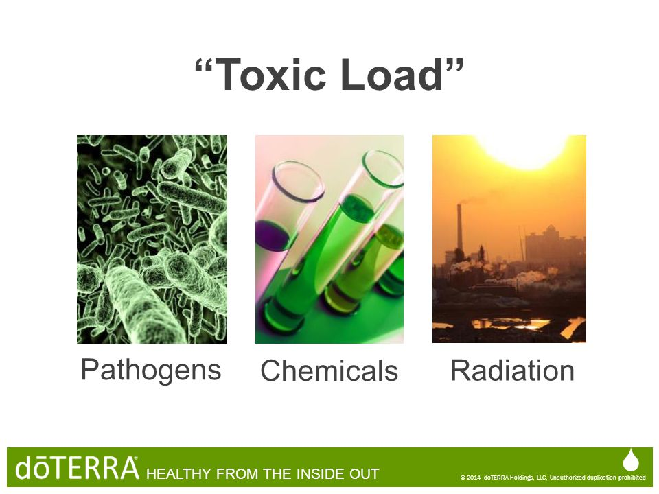 Toxic Load  Pathogens Chemicals Radiation