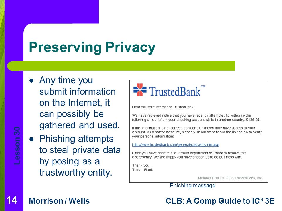 Preserving Privacy Any time you submit information on the Internet, it can possibly be gathered and used.