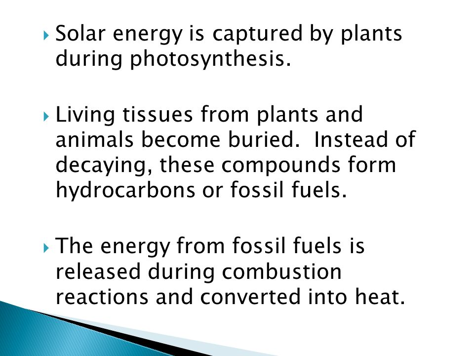 Solar energy is captured by plants during photosynthesis.