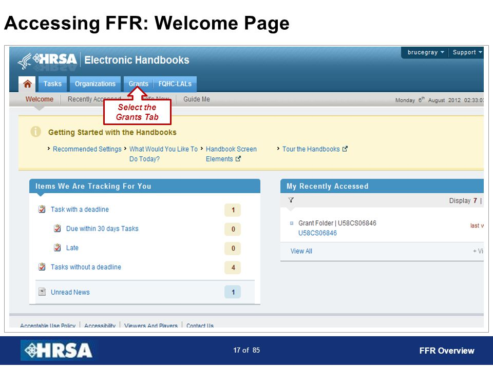 Accessing FFR: Welcome Page