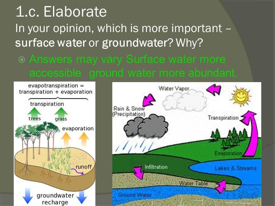 1.c. Elaborate In your opinion, which is more important – surface water or groundwater Why