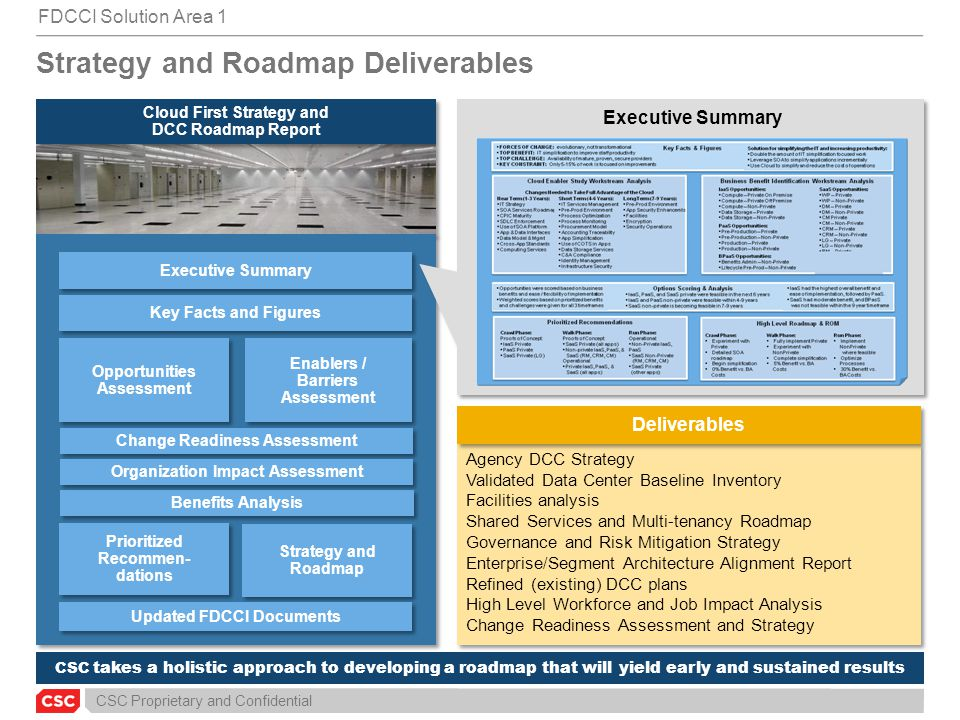 Strategy and Roadmap Deliverables