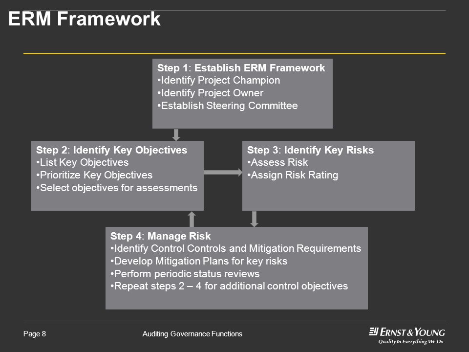 ERM Framework Step 1: Establish ERM Framework