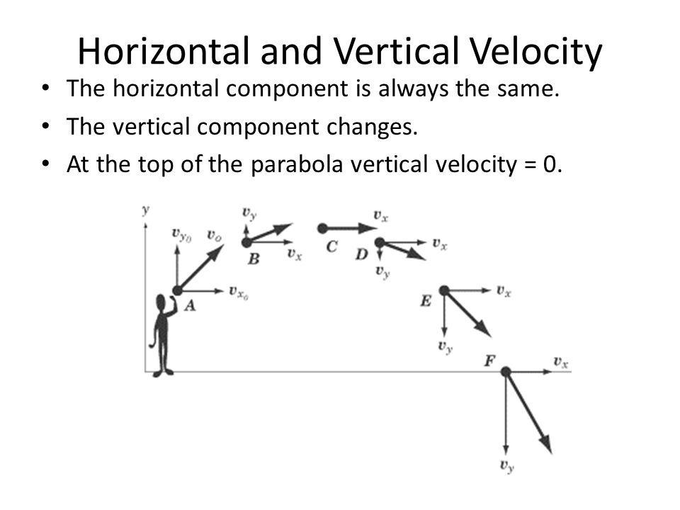 Horizontal and Vertical Velocity