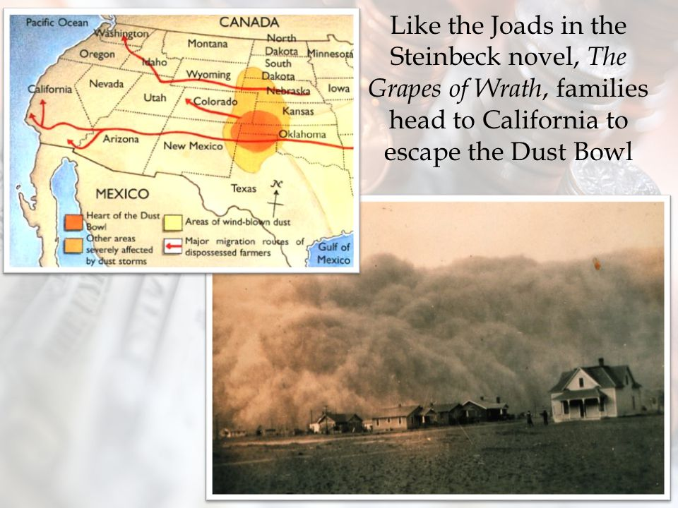 Like the Joads in the Steinbeck novel, The Grapes of Wrath, families head to California to escape the Dust Bowl