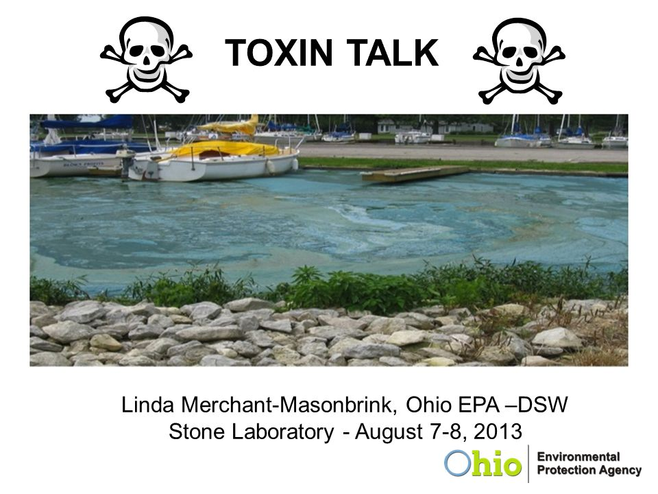TOXIN TALK Linda Merchant-Masonbrink, Ohio EPA –DSW
