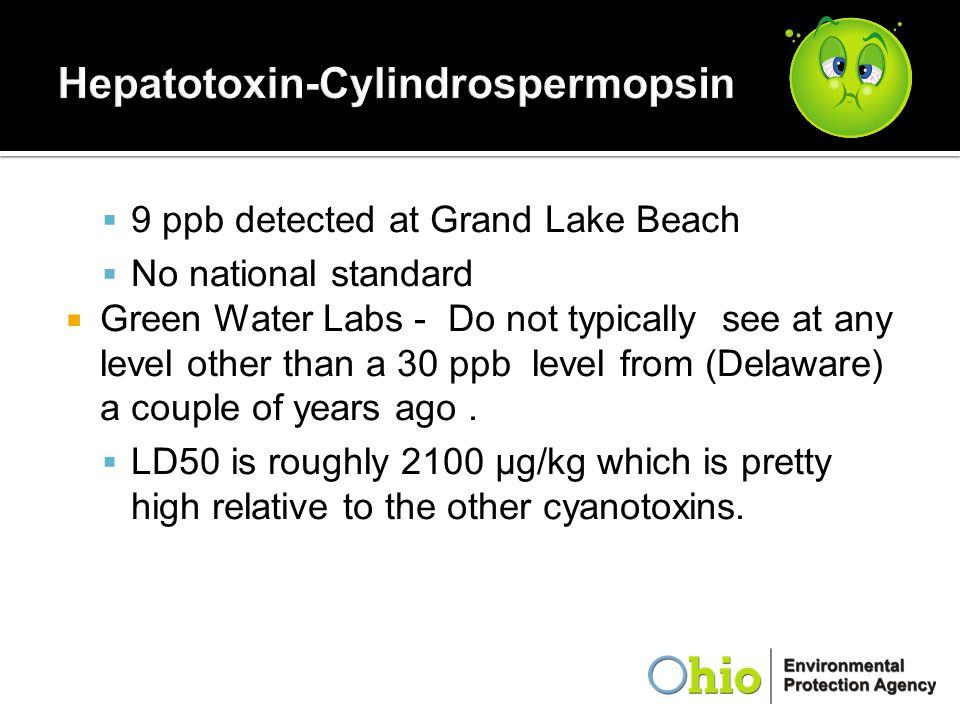Hepatotoxin-Cylindrospermopsin