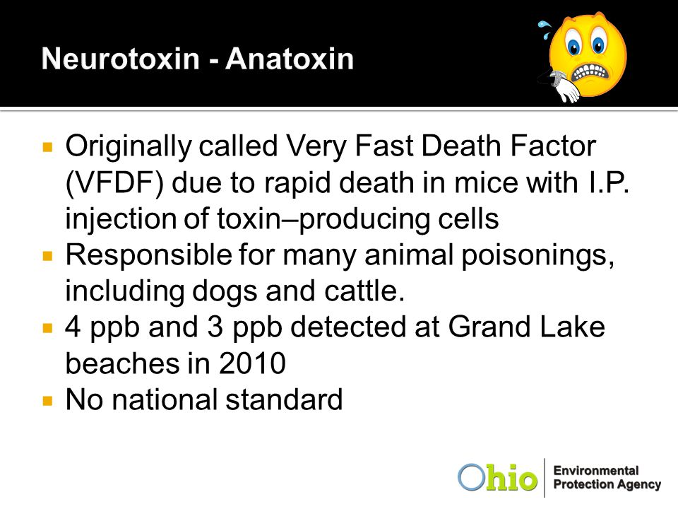 Neurotoxin - Anatoxin Originally called Very Fast Death Factor (VFDF) due to rapid death in mice with I.P. injection of toxin–producing cells.