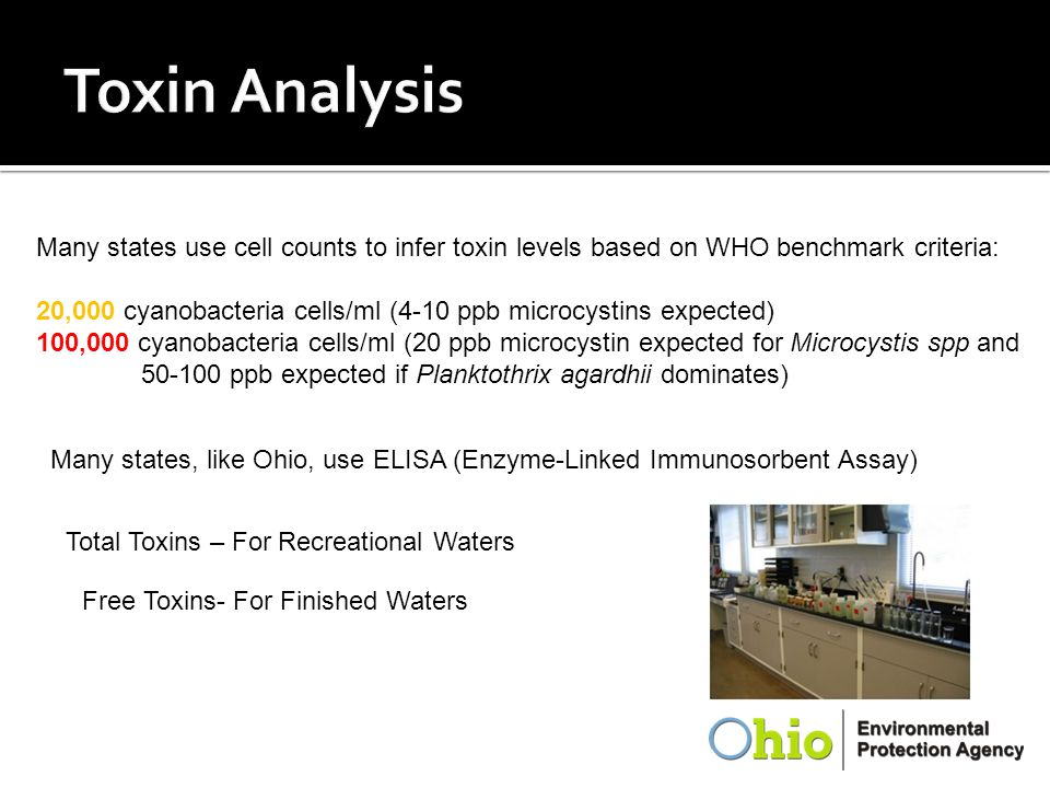 Toxin Analysis Many states use cell counts to infer toxin levels based on WHO benchmark criteria: