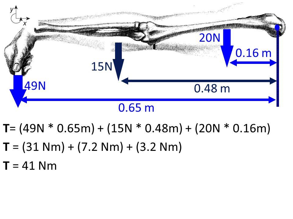 20N 0.16 m. 15N. 15N. 0.48 m. 49N. 0.48 m. 0.65 m. T= (49N * 0.65m) + (15N * 0.48m) + (20N * 0.16m)