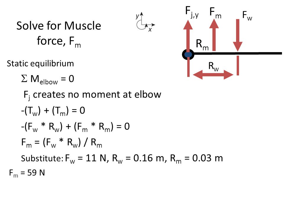 Solve for Muscle force, Fm