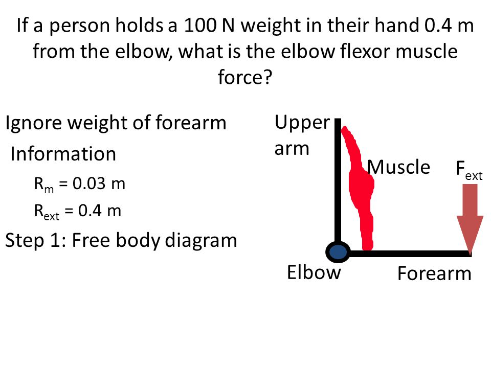 Ignore weight of forearm Information