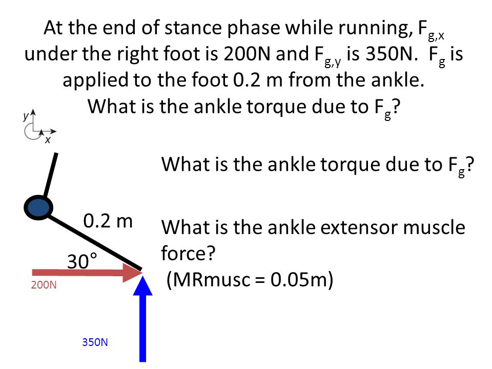 What is the ankle torque due to Fg