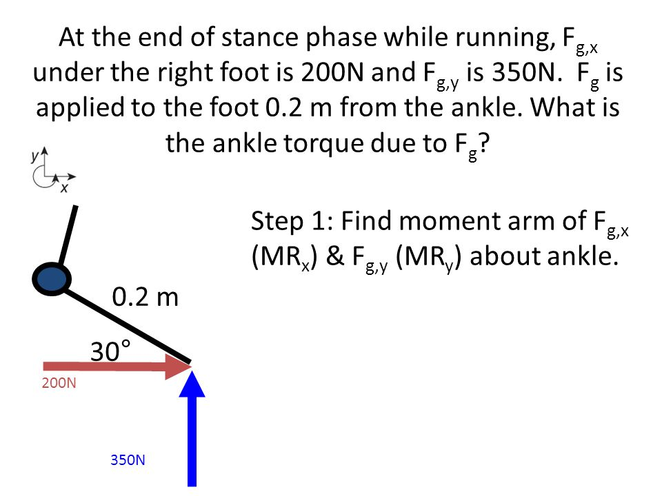 Step 1: Find moment arm of Fg,x (MRx) & Fg,y (MRy) about ankle.