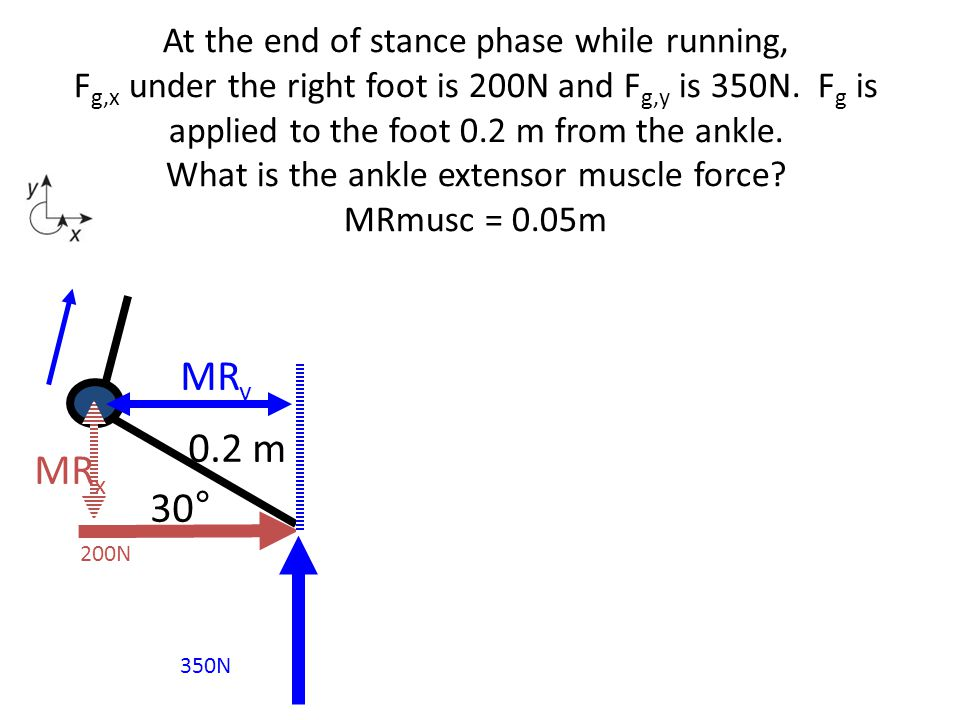 At the end of stance phase while running, Fg,x under the right foot is 200N and Fg,y is 350N. Fg is applied to the foot 0.2 m from the ankle. What is the ankle extensor muscle force MRmusc = 0.05m