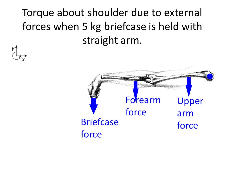 Torque about shoulder due to external forces when 5 kg briefcase is held with straight arm.