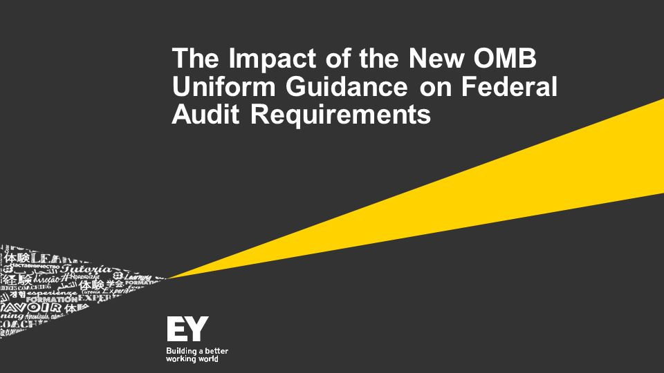 The Impact of the New OMB Uniform Guidance on Federal Audit Requirements