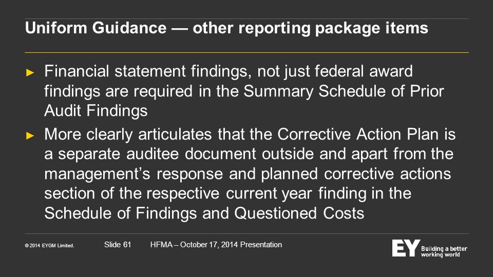 Uniform Guidance — other reporting package items