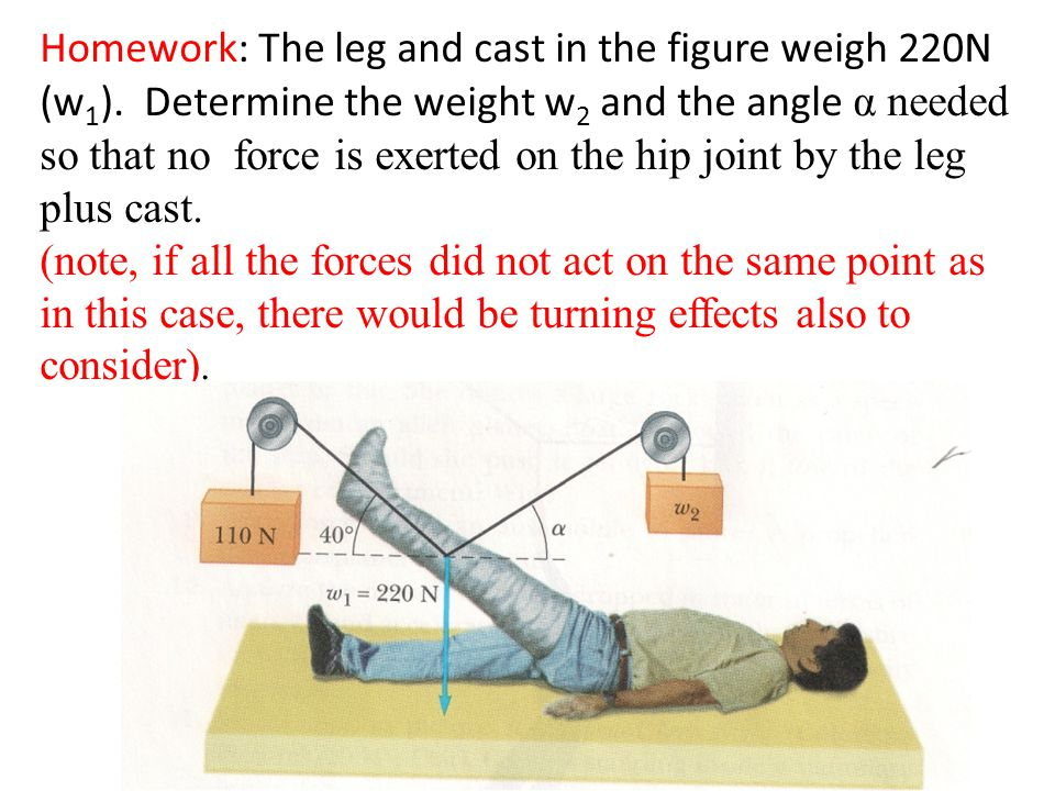 Homework: The leg and cast in the figure weigh 220N (w1)