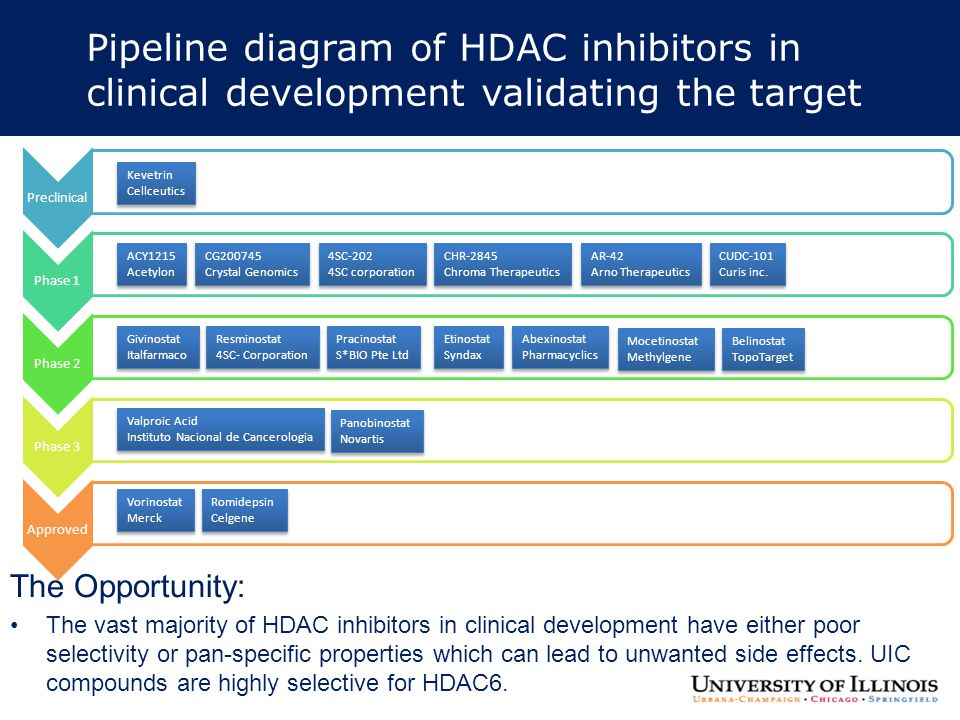 Pipeline diagram of HDAC inhibitors in clinical development validating the target