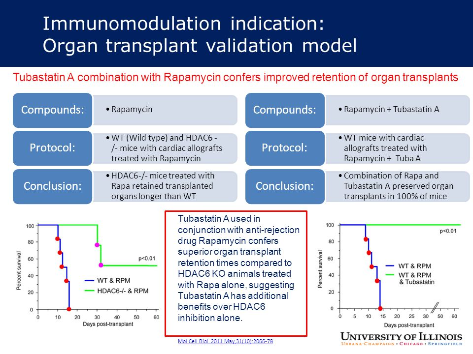Immunomodulation indication: Organ transplant validation model