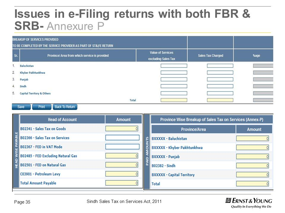 Issues in e-Filing returns with both FBR & SRB- Annexure P