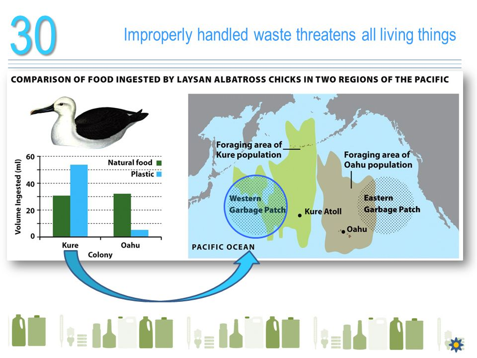 30 Improperly handled waste threatens all living things