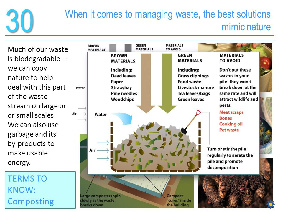 30 When it comes to managing waste, the best solutions mimic nature