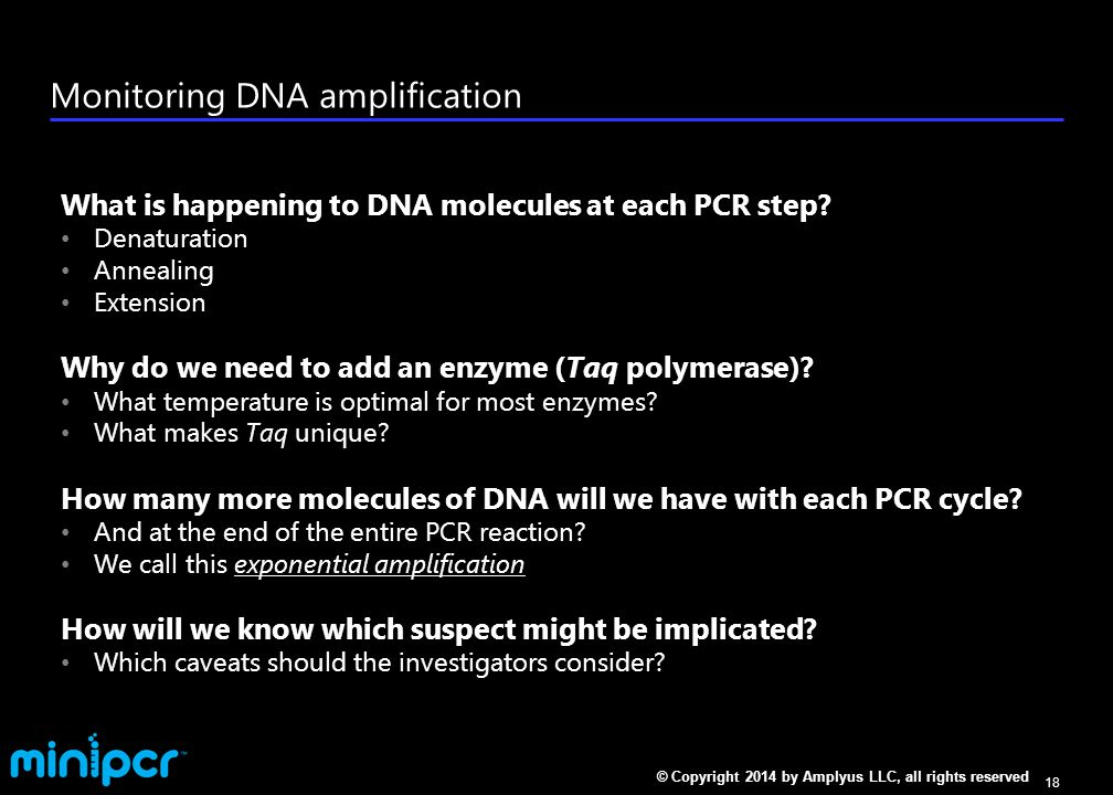 Quiz: Which of these are NOT characteristics of PCR primers
