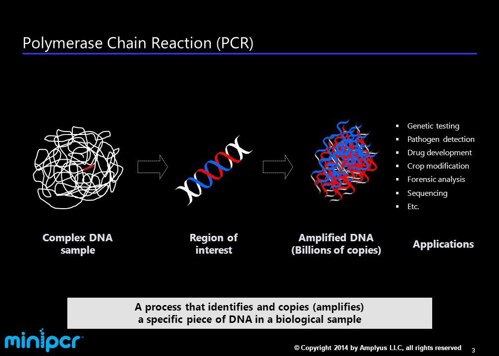 PCR relies on DNA's unique structure