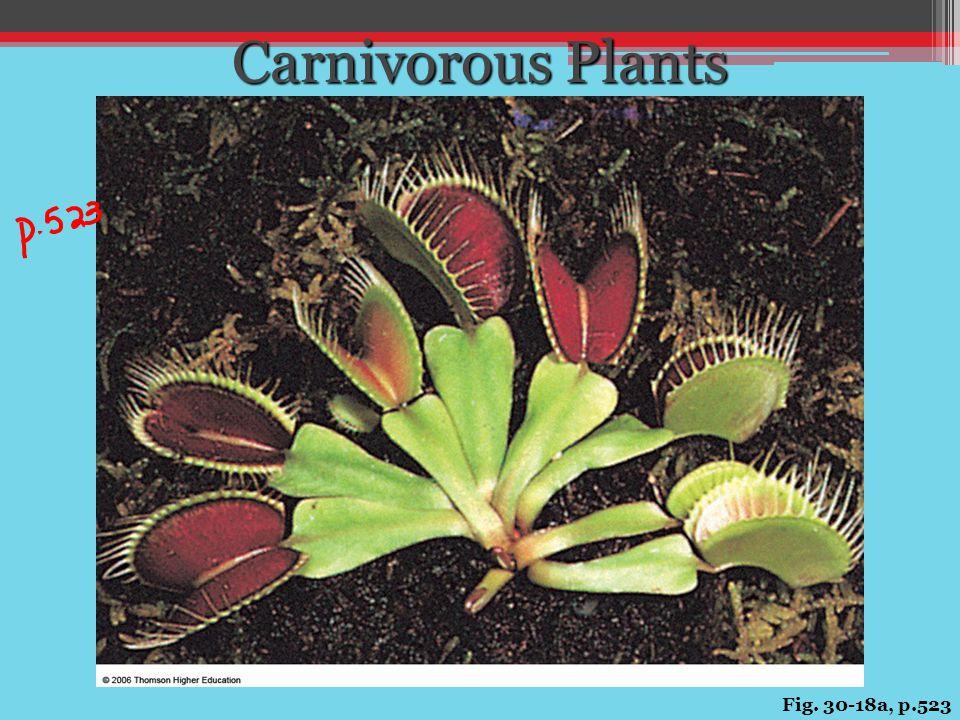 Carnivorous Plants Fig. 30-18a, p.523