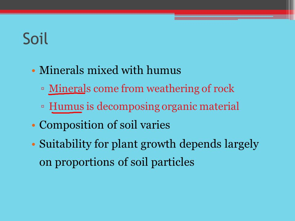 Soil Minerals mixed with humus Composition of soil varies