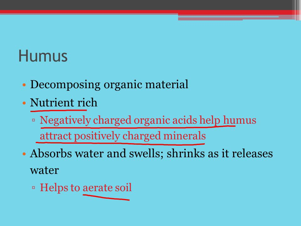 Humus Decomposing organic material Nutrient rich
