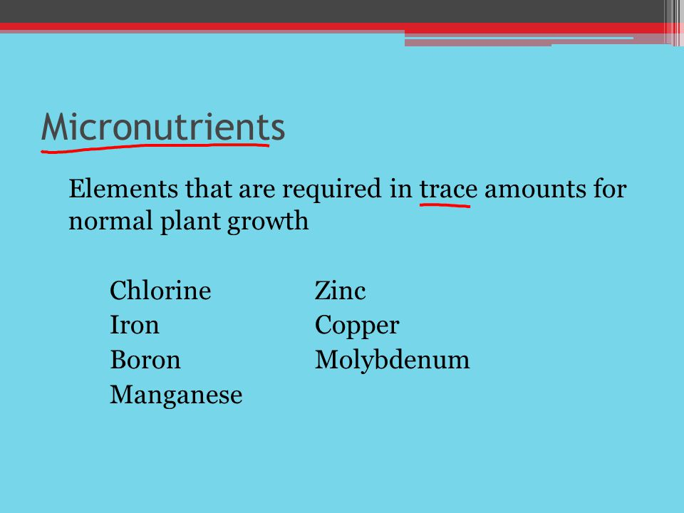 Micronutrients Elements that are required in trace amounts for normal plant growth. Chlorine Zinc.