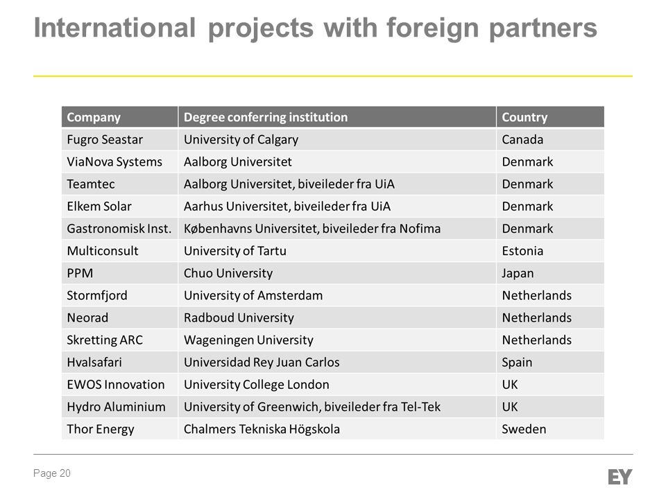 International projects with foreign partners