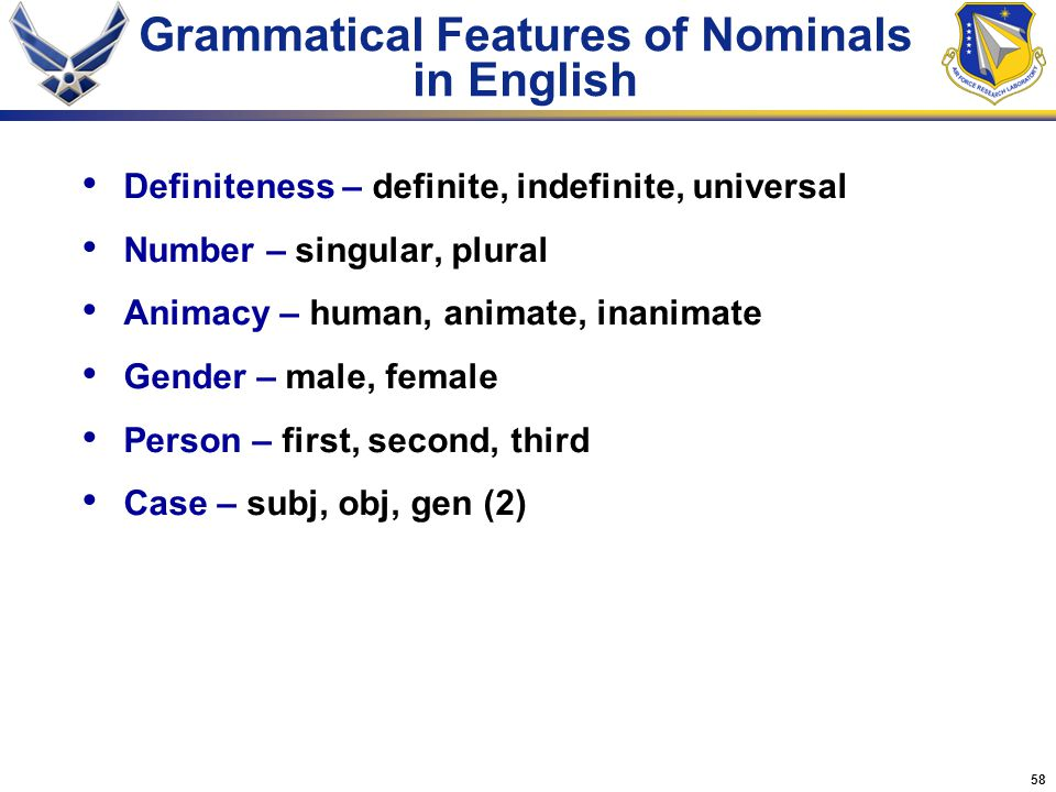 Grammatical Features of Nominals in English
