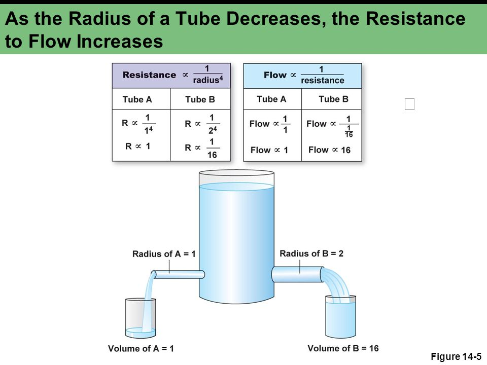 As the Radius of a Tube Decreases, the Resistance to Flow Increases