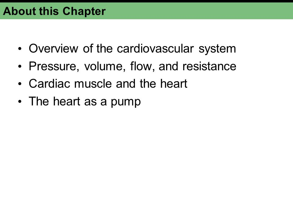 Overview of the cardiovascular system