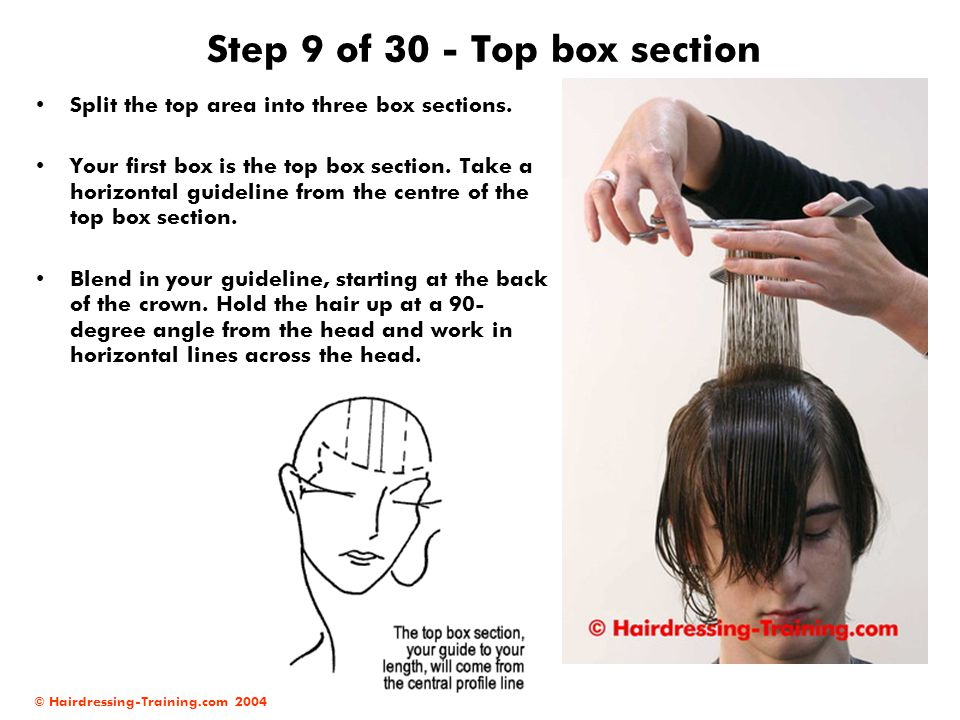 Step 9 of 30 - Top box section