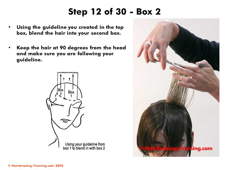 Step 12 of 30 - Box 2 Using the guideline you created in the top box, blend the hair into your second box.