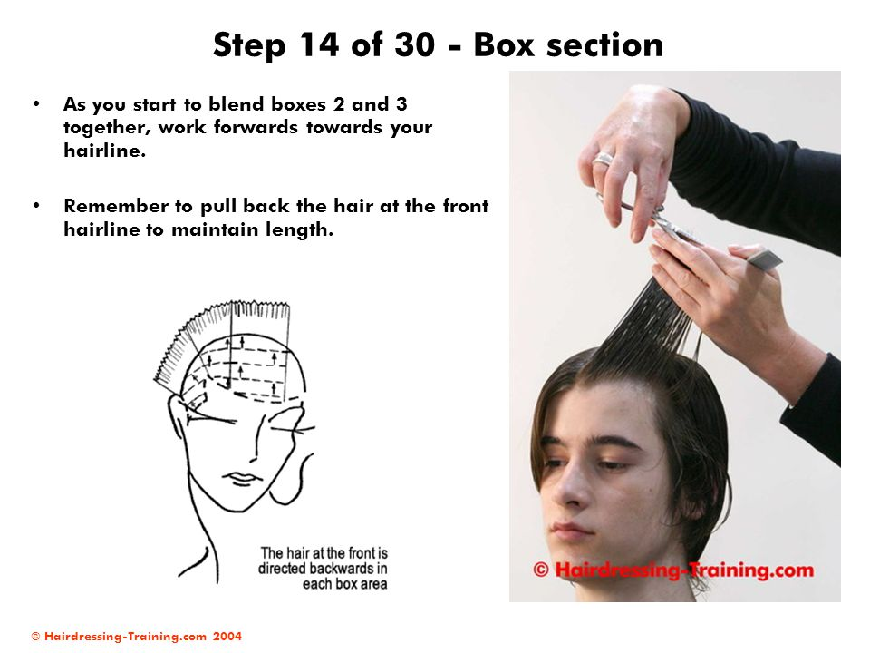 Step 14 of 30 - Box section As you start to blend boxes 2 and 3 together, work forwards towards your hairline.