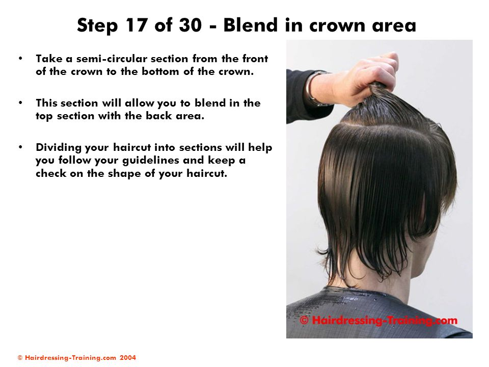 Step 17 of 30 - Blend in crown area